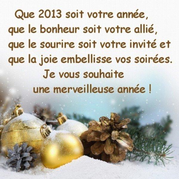 Tous mes voeux pour 2013