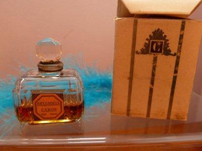 Petite Bellodgia avec sa boîte