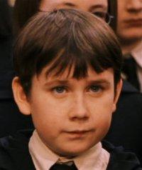 Zoom sur un perso n°2 : Neville Londubat (Harry Potter)