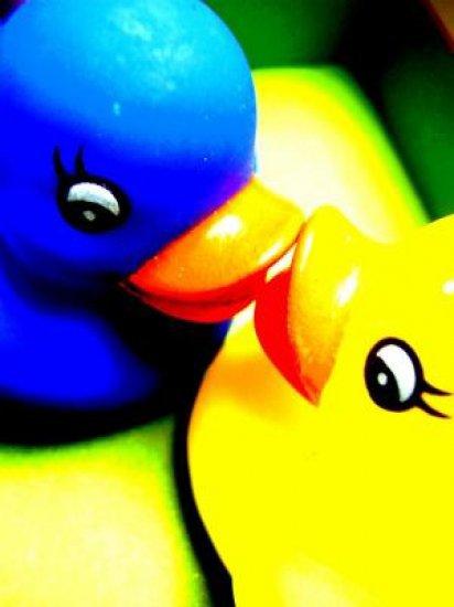 xXx--Vis ta vie en couleur, c'est ça le secret du bonheur !--xXx