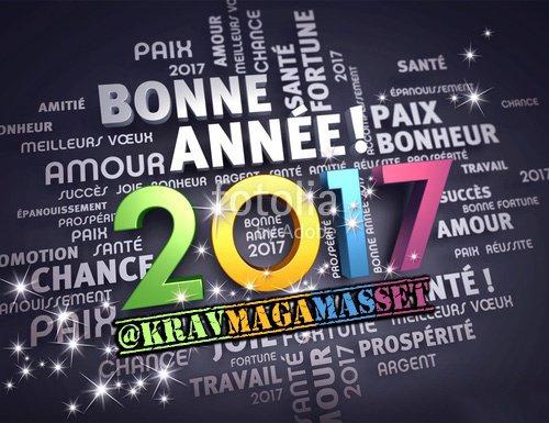 Bonne année 2017 par David Masset