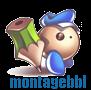montagebbl
