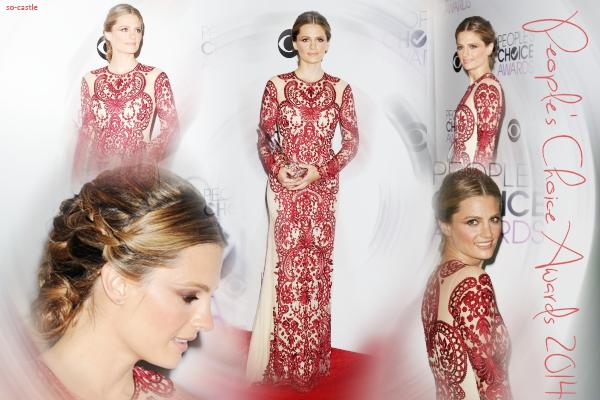 Catégorie: La série  Les récompenses de Castle: People's Choice Awards 2014 ! Créa & gifs: Florine