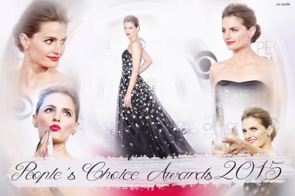 Catégorie: La série  Les récompenses de Castle: People's Choice Awards 2015 ! Créa & gifs: Florine