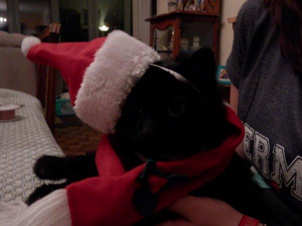 Noël approche...