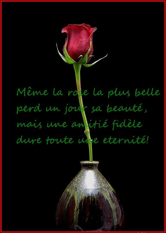 pour  vous mes amis !!!