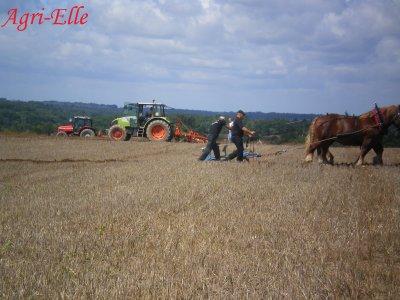 """Fête de la Terre 2011 """"Concour de Labour"""""""