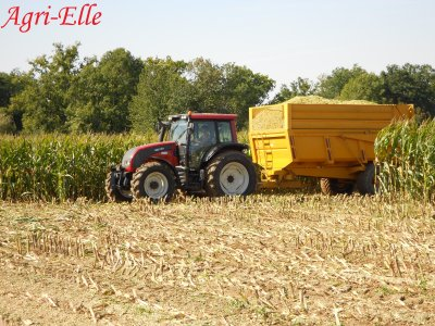 Ensilage de mais avec New holland