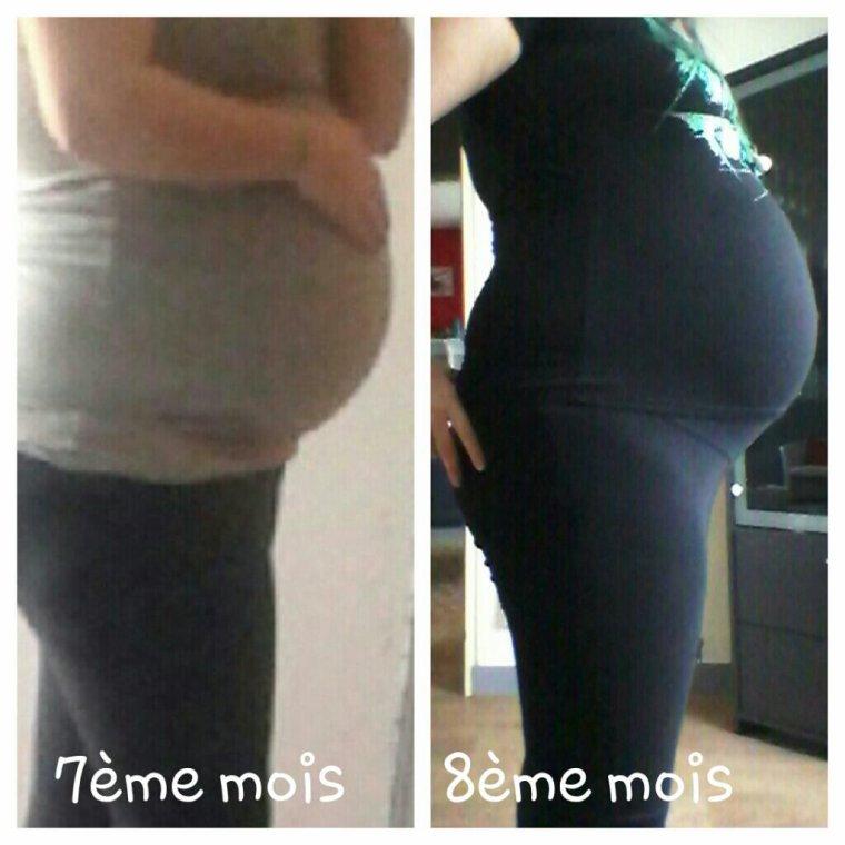 évolution grossesse