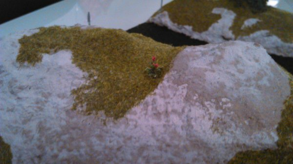 Un diorama pour david 1336 !!!!!