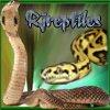 RJreptiles