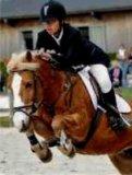 Photo de cheval95310