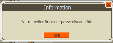 Up 100 bricoleur