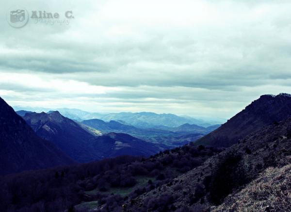 Photos #24  Thème : Paysage   Date : 10/04/2012  Lieu : La Vallée d'Ossau