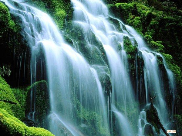 Gestes au quotidien - L'eau