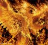 A-phoenix-T