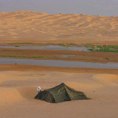 L'eau, la vie au milieu du désert.