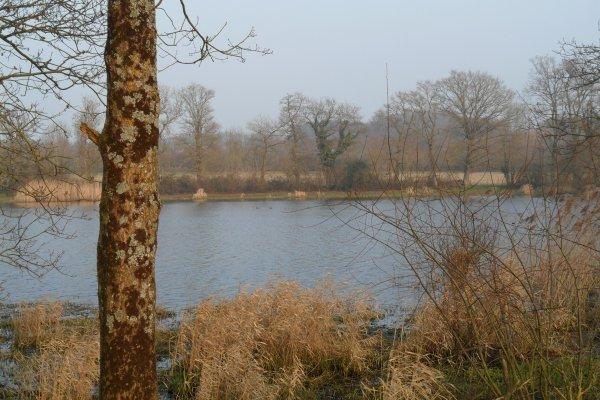 bien joli lac aux duc