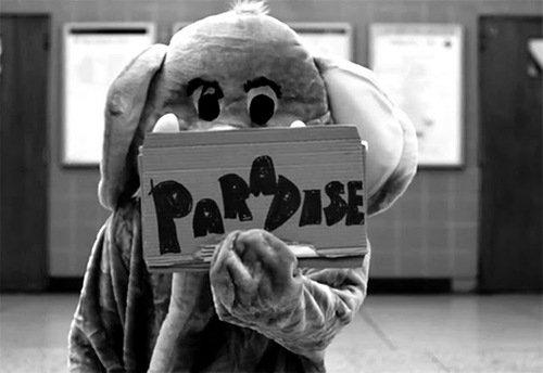 Paradise. ♠
