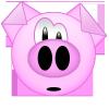 Cochon-Agressif