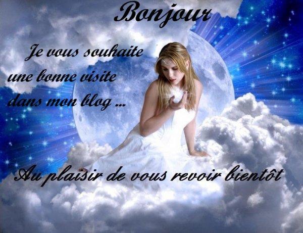 BONJOUR !!!!! VOUS SOUHAITE LA BIENVENUE DANS MON BLOG ,,,,,,,