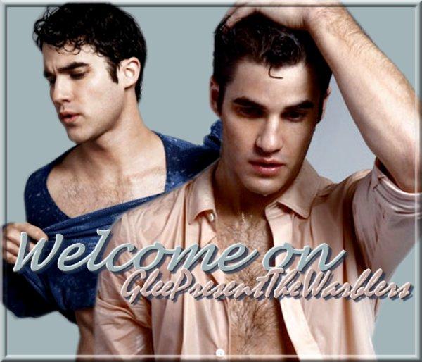 Bienvenue sur GleePresentTheWarblers !