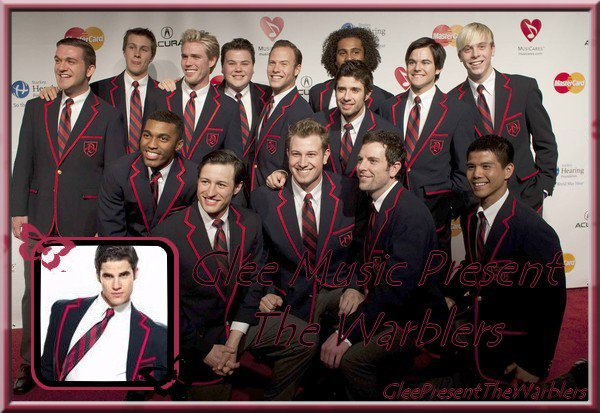 Glee Music Present The Warblers ( L'album )