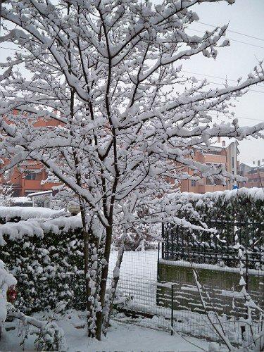 sotto la neve freddo e il gelo...brrr..♥ ╔═════════ ೋღ❤ღೋ ═════════╗ ◊ೋ ❤ BUON NATALE ❤ Felice Anno Nuovo.ೋ ◊ ╚═════════ ೋღ❤ღೋ ═════════╝