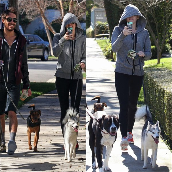 Miley Cyrus le 28 Janvier 2013 '' THE DOGS ''