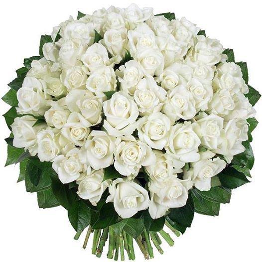 pour vous amies et amis ce jolie bouquet.