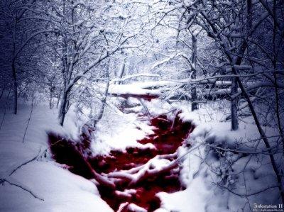 sous la neige accumulée, mon chemin s'est dissipé