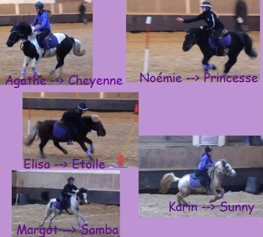 Les poneys $)