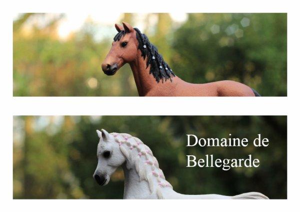 Domaine de Bellegarde