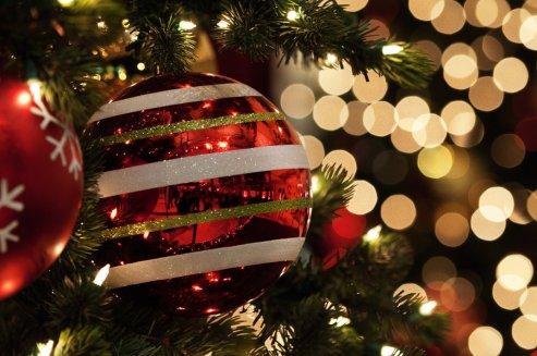 « Les rêves, c'est bien beau..  Mais ce serait merveilleux de pouvoir les réaliser de temps en temps.. »  Alyson Noël