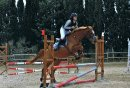 Photo de miss--fantasy--horse