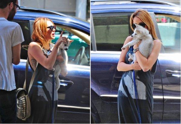 Miley à l'aéroport LAX avec un nouveau chien + 1 nouvelle photo personelle  Top, bof ou flop ? Avis : Flop !