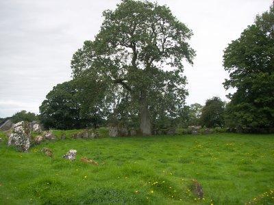 Le cercle de pierre à Lough Gur