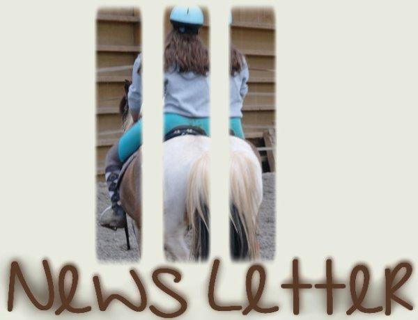 News Letter ○