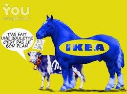 SANTÉ Boulettes suspectes chez Ikea