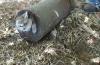 Un chat a été retrouvé coulé dans du béton...