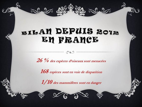 Bilan depuis 2012 en France! (Source : WWF France)