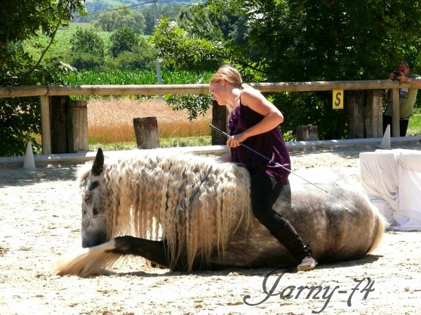 Spectacle au poney club des Pioux