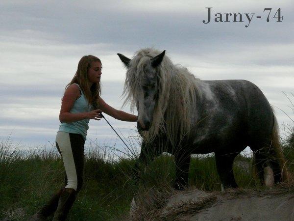 Si nous n'écoutons pas le cheval, ce n'est plus de la communication, c'est un monologue