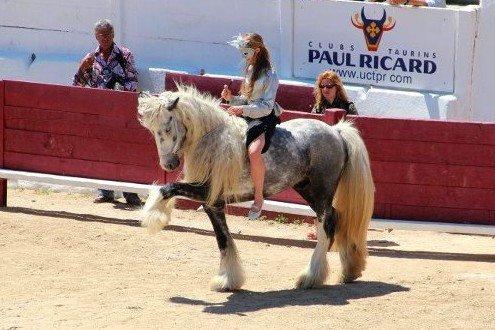 { Bienvenue sur le blog de mes poneys Jarny, Tao  Mélie & Wako }