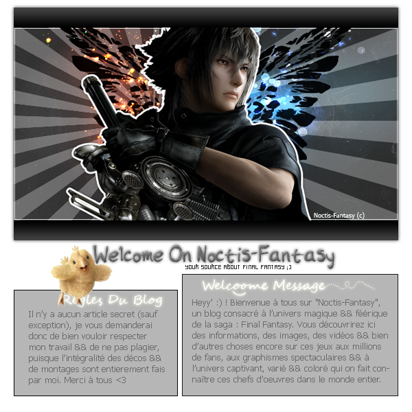 »Un Blog 100% Final Fantasy