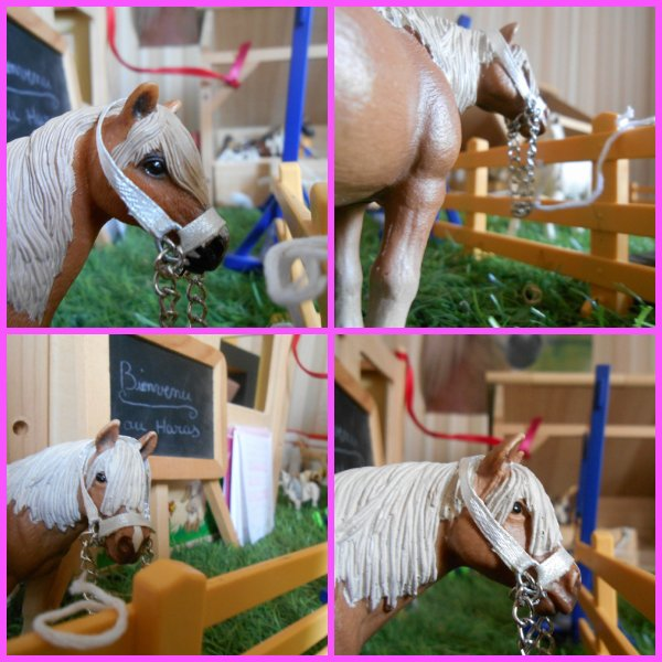 Créations N°12 : licol blanc versions schleich