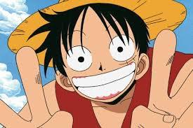 Les cartes d'identité de Luffy et Zoro