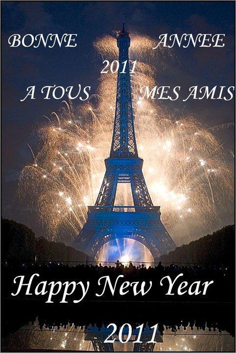 Bonne année 2011 a toutes et tous Happy New Year.