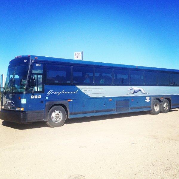 05-01-2015 - Jasper - Alberta - Suite à une sortie de route, Plusieurs blessés dans un accident d'autocar de la compagnie Greyhound près de Jasper