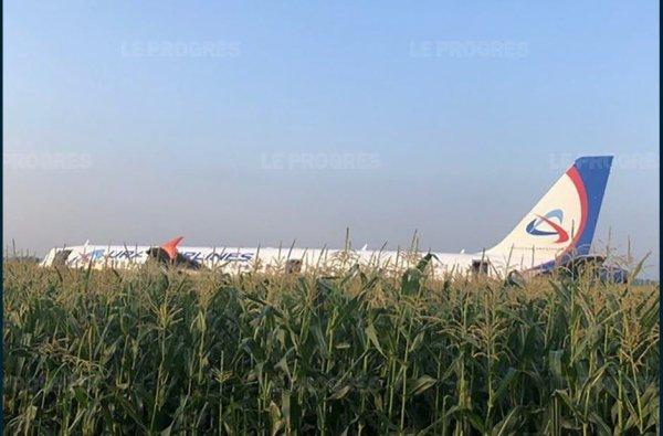 15-08-2019 - MOSCOU - Russie - Un avion airbus A321 atterrit d'urgence sur un champ de maïs faisant dix blessés